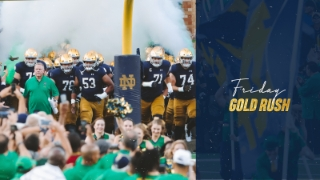 Friday Gold Rush | Q & A